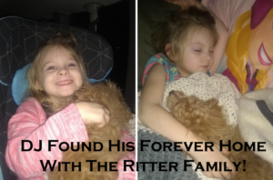 """DJ"" Now With The Ritter Family!"