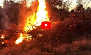 Burning Brush In The Ditch! Fire slow-mo