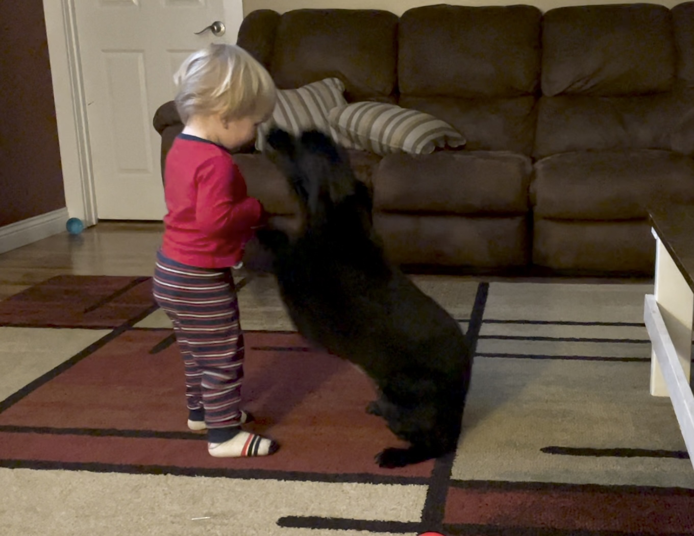 Gentry (our son) Playing With One Of Our Dogs